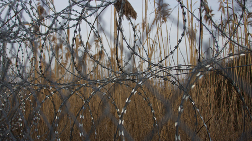 The fence along the Serbian and Hungarian border (Photo by Rian Bosse)