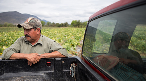 Aurelio Martínez Moran, a mid-level farmer in Queretaro, Mexico, stands on the land he's farmed for most of his life on March 4, 2017. (Photo by Johanna Huckeba)