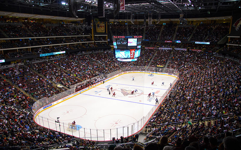 Coyotes arena photo
