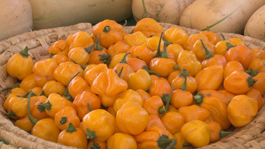 Merchants sell bell peppers and other local foods at the Roadrunner Park Farmers Market in Phoenix on Saturday.
