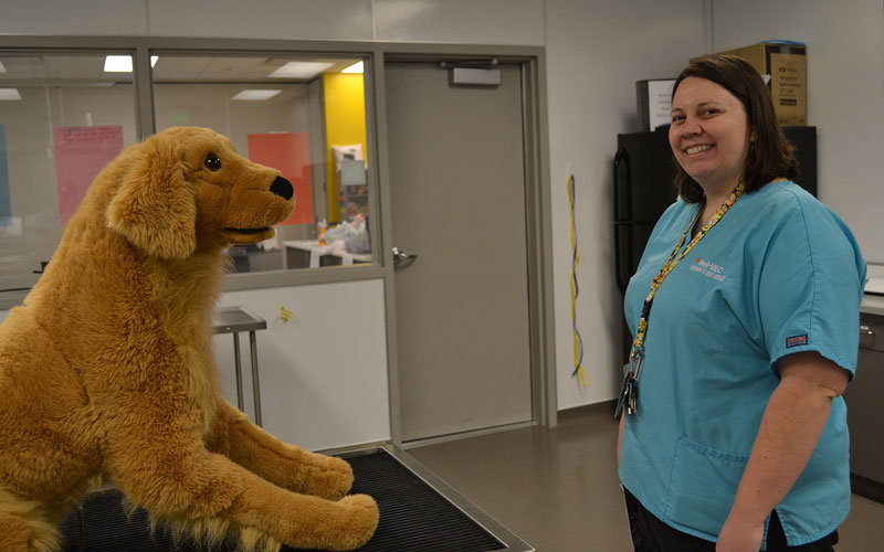 Hailey Adams is a West-MEC Veterinary Sciences Instructor who teaches students to become certified veterinary assistants. (Photo by James Anderson/Cronkite News)
