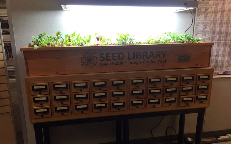 The seed library at Mesa Public Library encourages the public to garden more with free seeds. (Photo by Elenee Dao/Cronkite News)