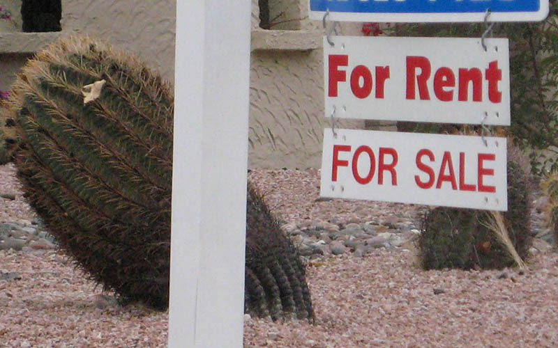 Renters in Phoenix and other large cities are likely to pay more for car insurance than homeowners, a new report says.