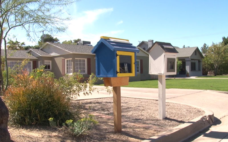 Little Free Libraries photo
