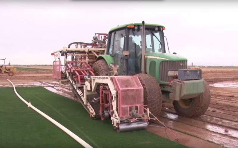 The hot Arizona climate has an immediate impact on how local golf courses care for the land. (Video by Elaine Wilson/Cronkite News)