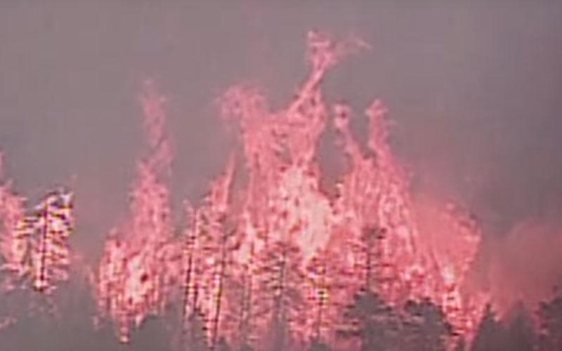 wildfire1040816-800