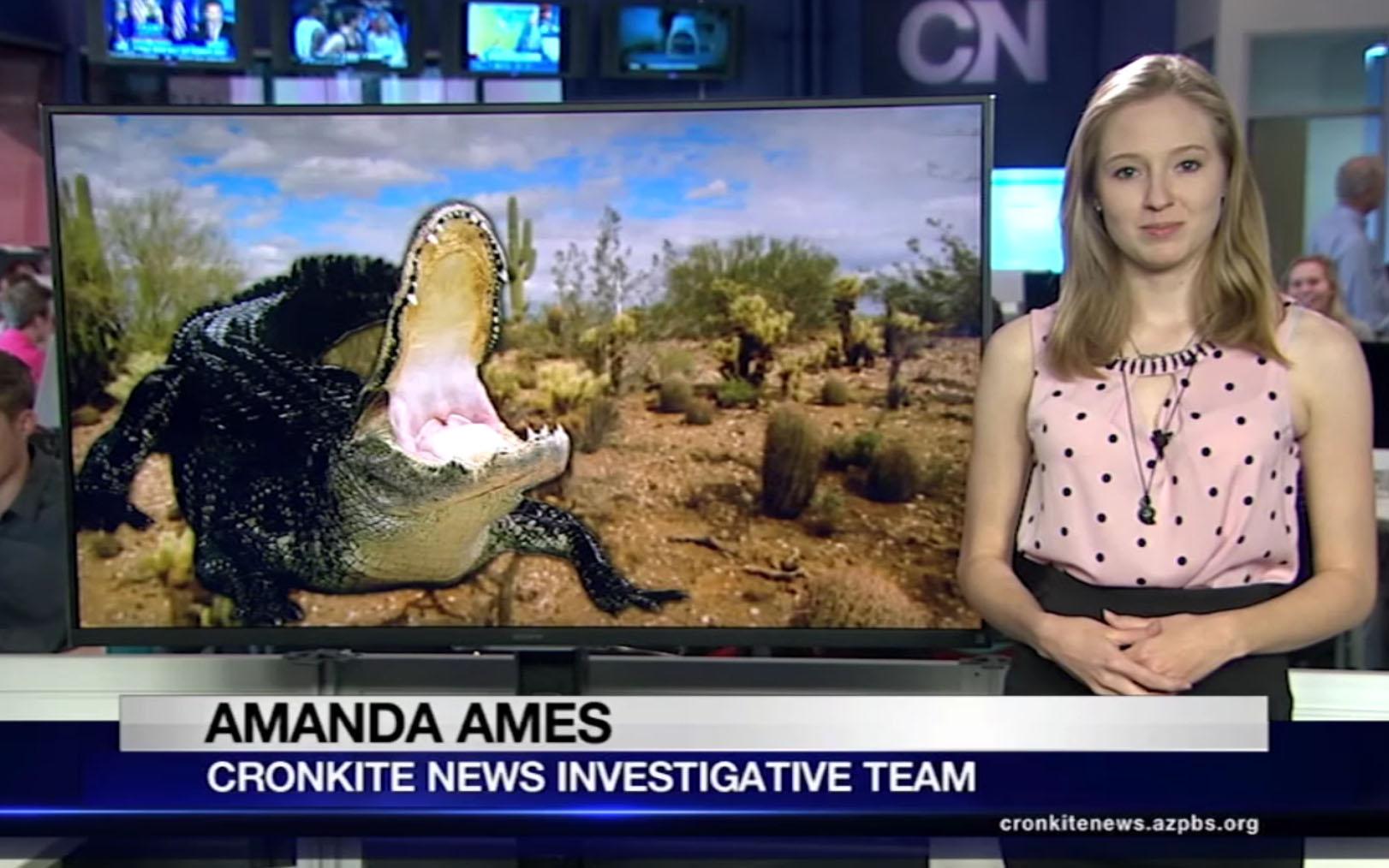 newscast5-26-2016