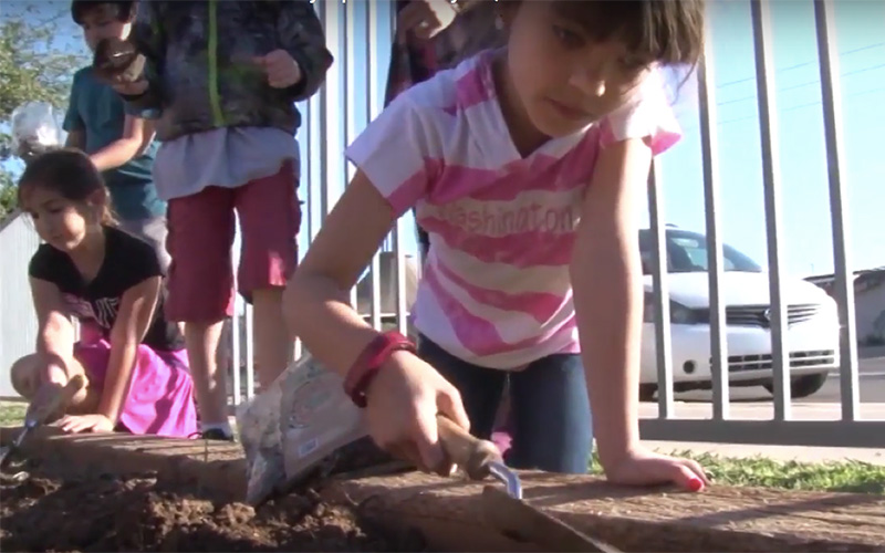 Second graders at Madison Simis Elementary School work in a school garden.