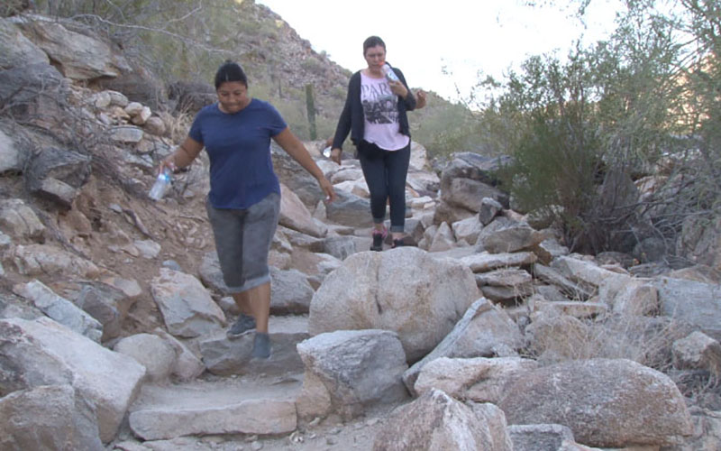 Hikers walk a trail in South Mountain Park. Phoenix park rangers advise hikers to watch out for bees, who may attack if they feel threatened. (By Krandall Brantley/ Cronkite News)