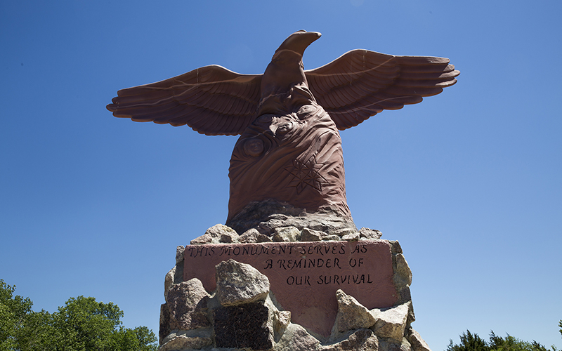Tribal members built this monument located on the former site of the Tekakwitha Orphanage on the Sisseton Wahpeton Oyate Reservation in South Dakota. The orphanage was closed roughly 30 years ago, but for decades children were separated from their families and brought here. The eagle represents the tribe protecting the children and its promise to prevent similar incidents from happening again. (Mike Lakusiak/News21)