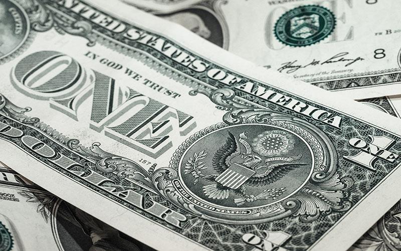 Dollar800-500