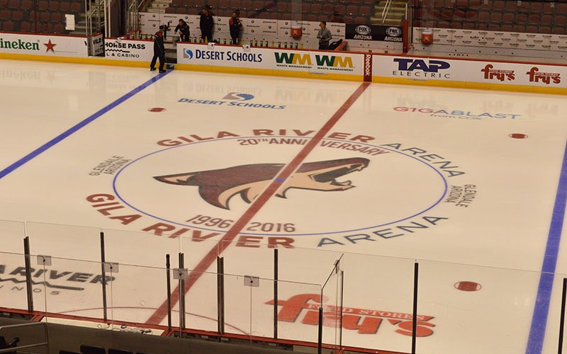 As the Arizona Coyotes begin their 2016-2017 season, the team celebrates their 20th season in the desert. (Photo by Brendan Kennealy/Cronkite News).
