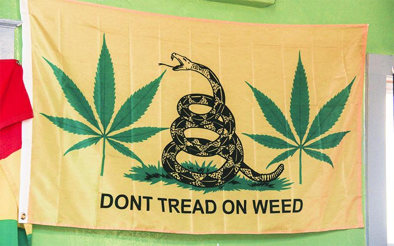 A Gadsden flag parody at the 420 Social Club in Tucson, Ariz. (Photo by Cronkite News/Brian Fore)