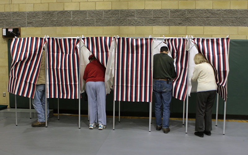 People vote at voting booths