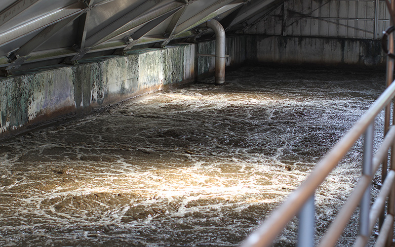 A glimpse inside an aeration basin at the NWWRP in Mesa. (Photo by Cassie Ronda/Cronkite News)