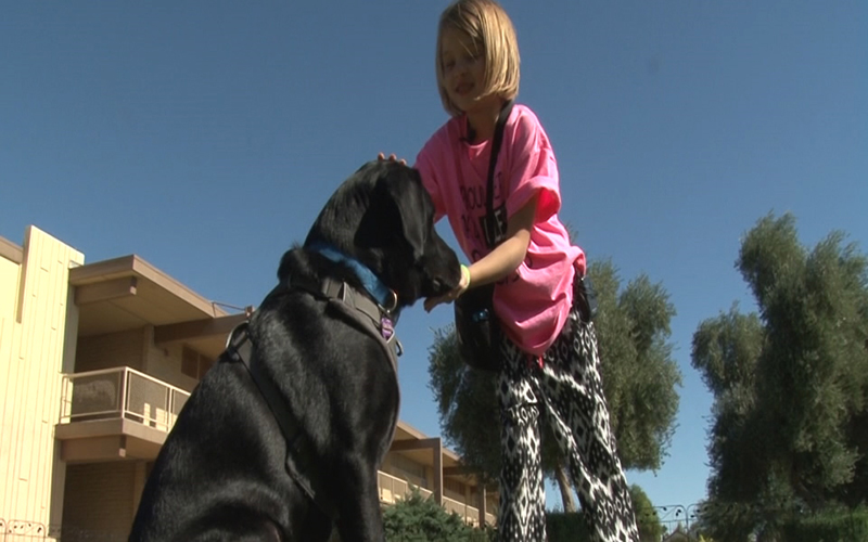 Kristoff is trained as a diabetic alert dog and will soon be helping 6-year-old Mia. (Photo by Tyler Fingert/Cronkite News)
