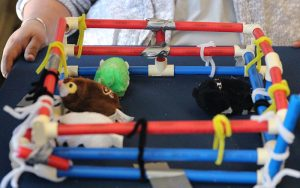 Teachers attending a workshop in Flagstaff created corrals to contain toy mice. Teachers will replicate this project with their students. (Photo by Chelsea Shannon/Cronkite News)