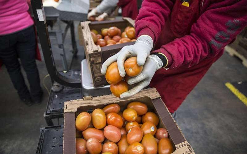 Produce bill, helps some and hurts others | Cronkite News