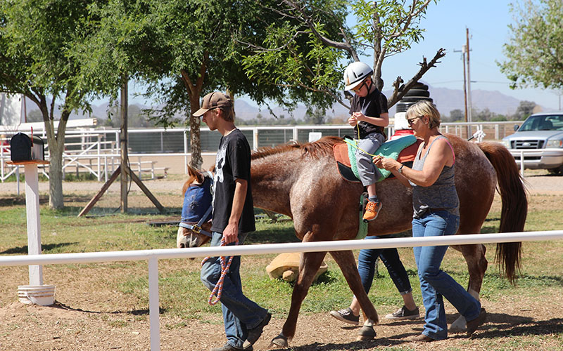 Growing At A Gallop: Equine Therapy Connects Horses, Children With ...
