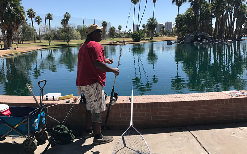 Arizona urban parks stocked with 250 000 fish arizona for Fishing lakes in arizona