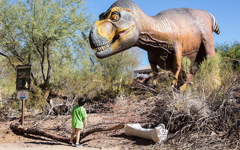 little boy looks at t-rex