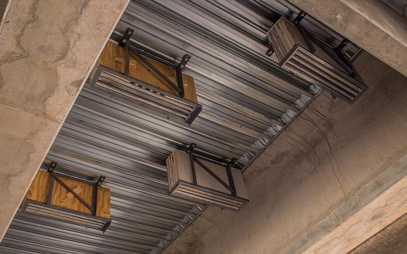 Bats Bo And Bridges Officials Build New Homes For In Marana