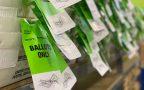 Arizona voters have already cast a record 2.3 million early ballots