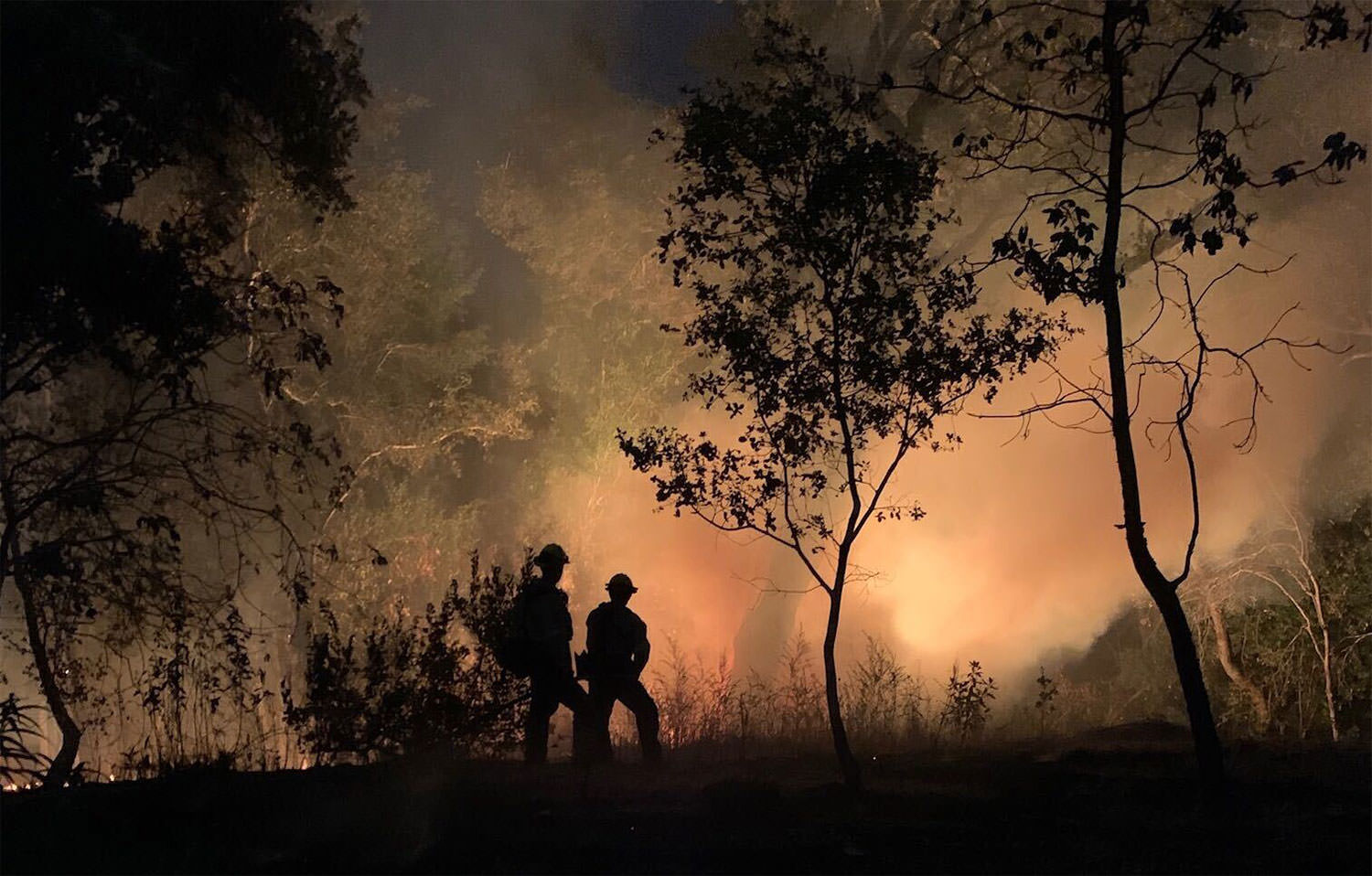 Firefighters look on as the Walbridge Fire burns near Sweetwater Springs Road last summer. (Photo courtesy of Ivan Redus)