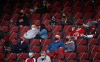 'They really do exist': Coyotes fans welcome in-person experience