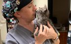 For the love of animals: High suicide rates reflect the many stresses of veterinarians