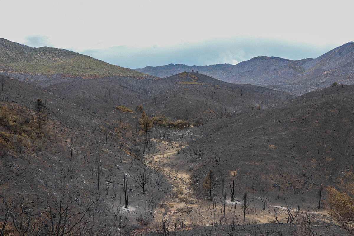 A thunderstorm approaches the charred landscape around Pinal Peak near Claypool on June 23, 2021. Firefighters and ecologists hope  monsoon rains quickly revive the vegetation. (Photo by Gianluca D'Elia/Cronkite News)
